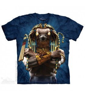 Soldat d'Horus - T-shirt Guerrier The Mountain