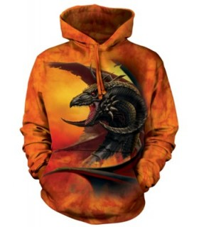 Sweat shirt à capuche Dragon The Mountain
