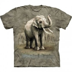 T-Shirt Eléphants d'Asie par The Mountain