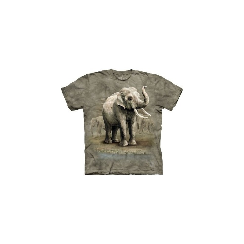 Asian Elephants - Zoo T Shirt by the Mountain