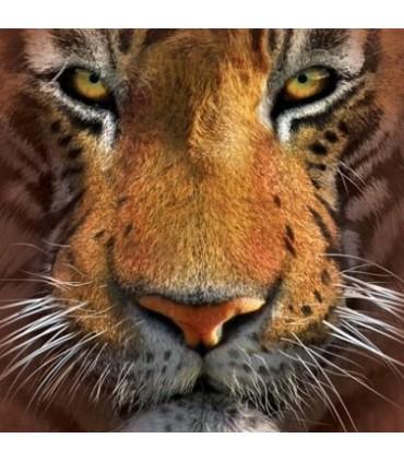 T-Shirt tête de Tigre par The Mountain