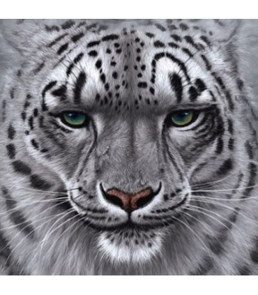 Snow Leopard Portrait - Big Cats T Shirt by the Mountain