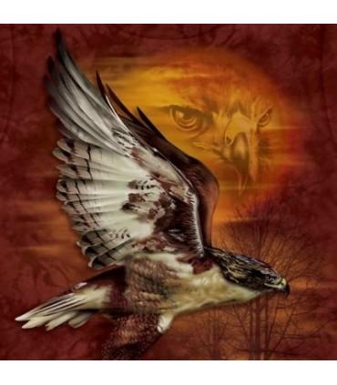 Hawk Sun - Birds T Shirt by the Mountain