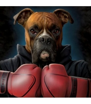 Boxer Rocky - Manimals T Shirt by the Mountain