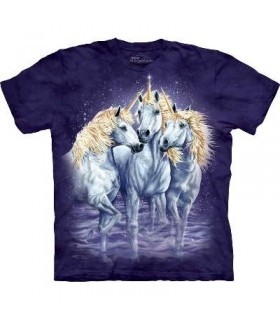 Find 10 Unicorns - Fantasy T Shirts Mountain